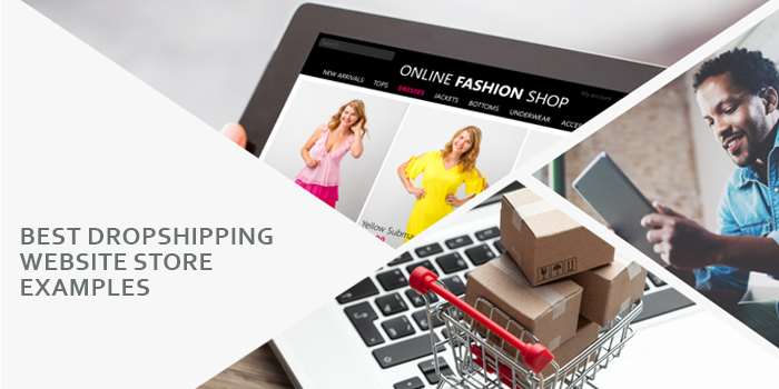 25 Best Dropshipping Website Store Examples