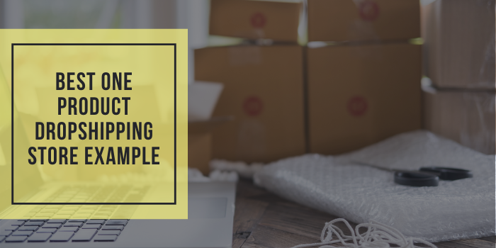 12 Best One Product Dropshipping Store Example
