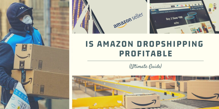 Is Amazon Dropshipping Profitable In 2021? (Ultimate Guide)