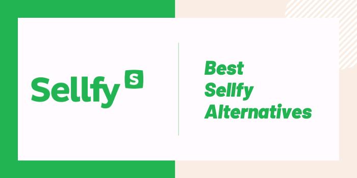 Best Sellfy Alternatives